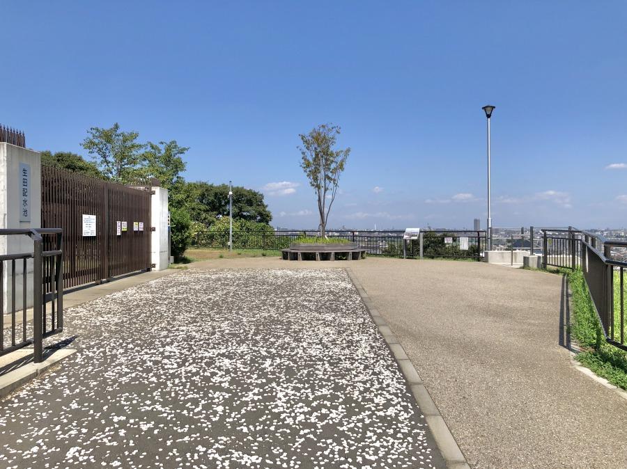 行きついたのは生田配水池の土地を利用した展望広場。とっても開放的で心地よい風を感じられます。