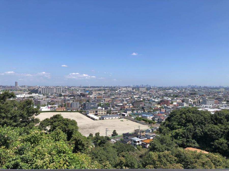 高台からの眺望がこちら。初めて見たときには驚きと感動で言葉を失いました。この景色、生田で見られるんです。