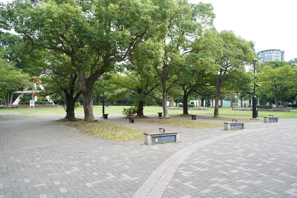 亀戸中央公園(A地区)に着きました。こういう開けた公園で風を浴びながら、読書するのも良いですよね。