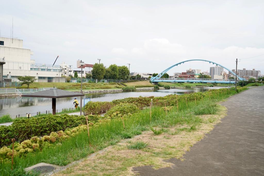 右奥にあるのが「ふれあい橋」。東京スカイツリーの撮影スポットとしても人気なんだそうです。また、釣りをしている方もちらほらと。休日はのんびりとお弁当を持参して釣りを楽しむのも良いですね。