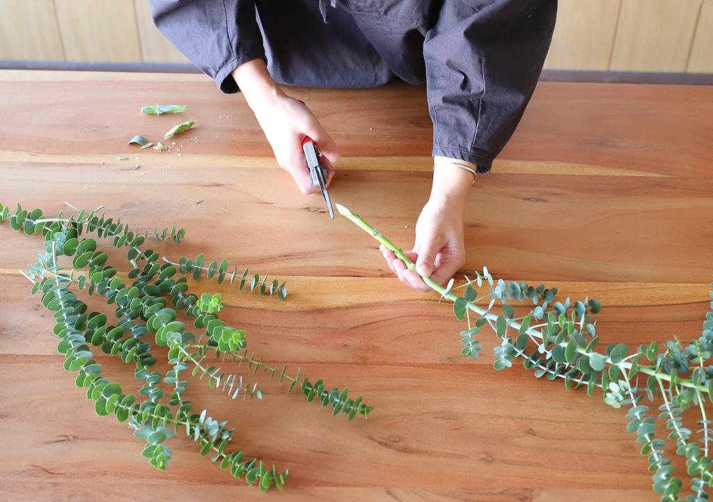 2)茎の先端をカットします(=切り戻し)。吸水面は広い方がよいので、斜めにカットして、できるだけ断面が大きくなるようにしましょう。