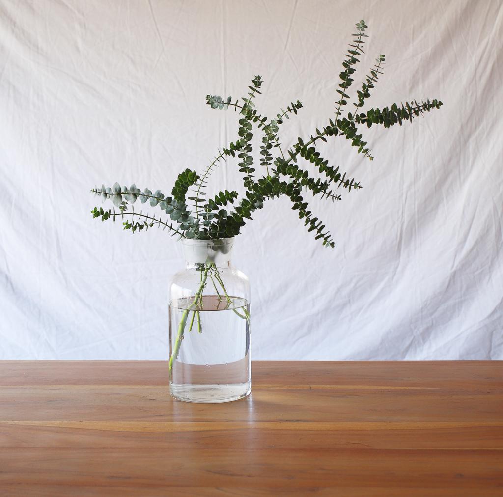 花瓶に生けたイメージはこんな感じ。水に葉がついていないのが、お分かりいただけますか。