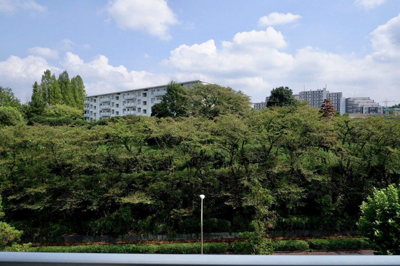 緑豊かな眺望が広がるこの団地で、新しい暮らしをスタートさせませんか。