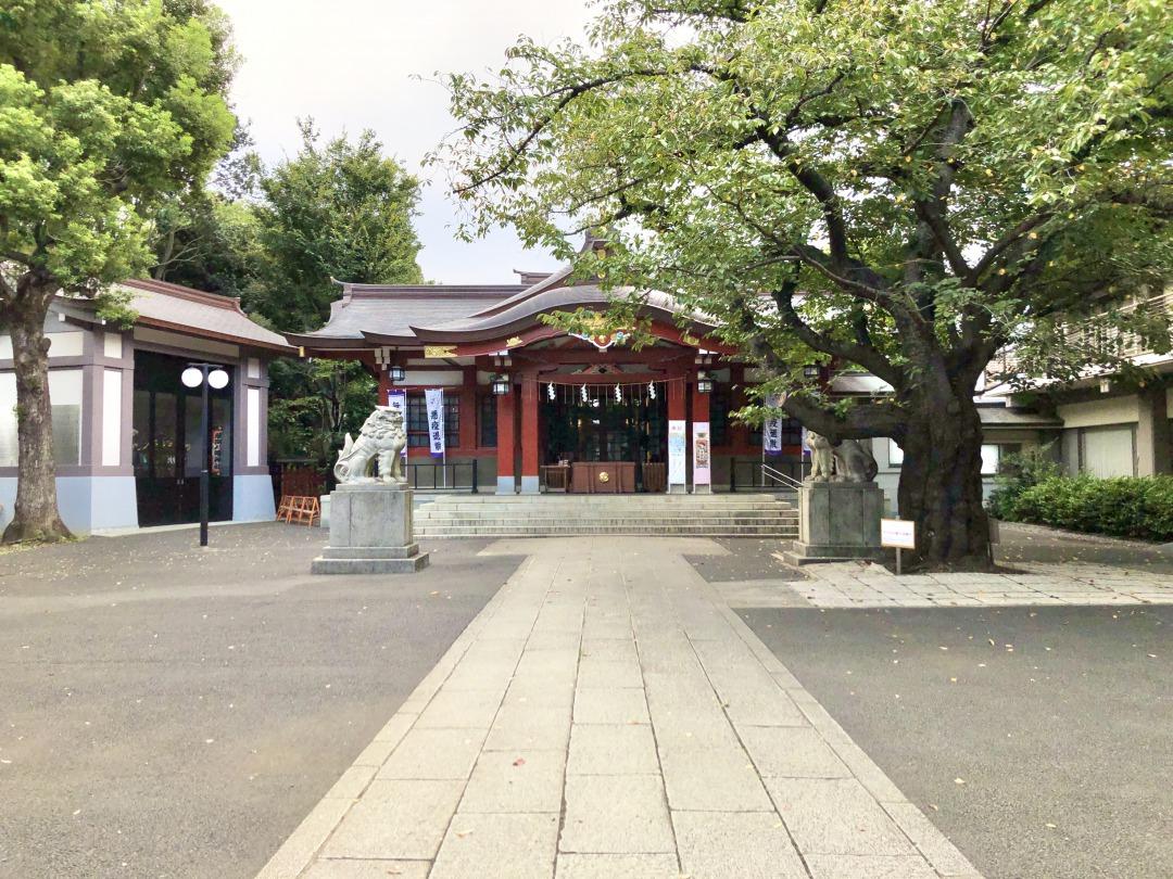 神社で1番大切な行事である例大祭には境内に百件近い露店が立ち並び、大勢の参拝客で賑わいます。そして御神輿が街を渡り歩き、地区全体で盛り上がるお祭りです。