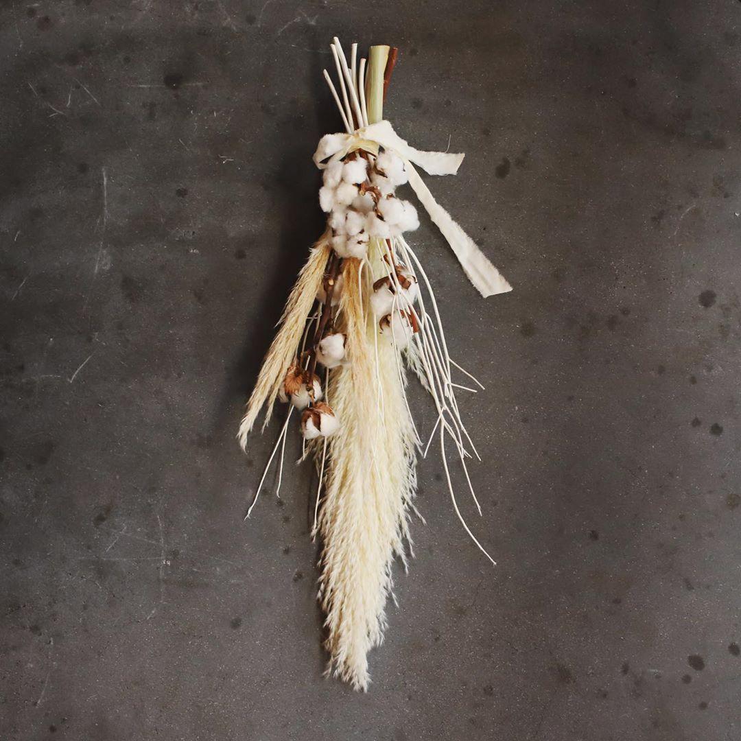 白いドライフラワーにするためには花穂が出る前に刈り入れて、剥き乾燥させる必要があります。ドライフラワーとしてとても人気な植物の一つです。