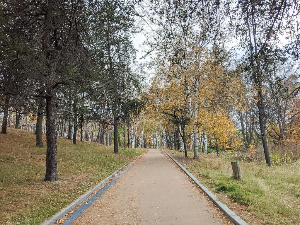 のどかな住宅街と、大きな自然公園のある街。札幌市美園駅周辺のお部屋まとめ