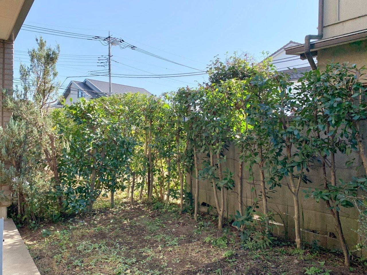 そしてなんといってもおすすめは、このお庭。生垣もしっかりあるので、人目を気にせずガーデニングを楽しむことができそうですよ。