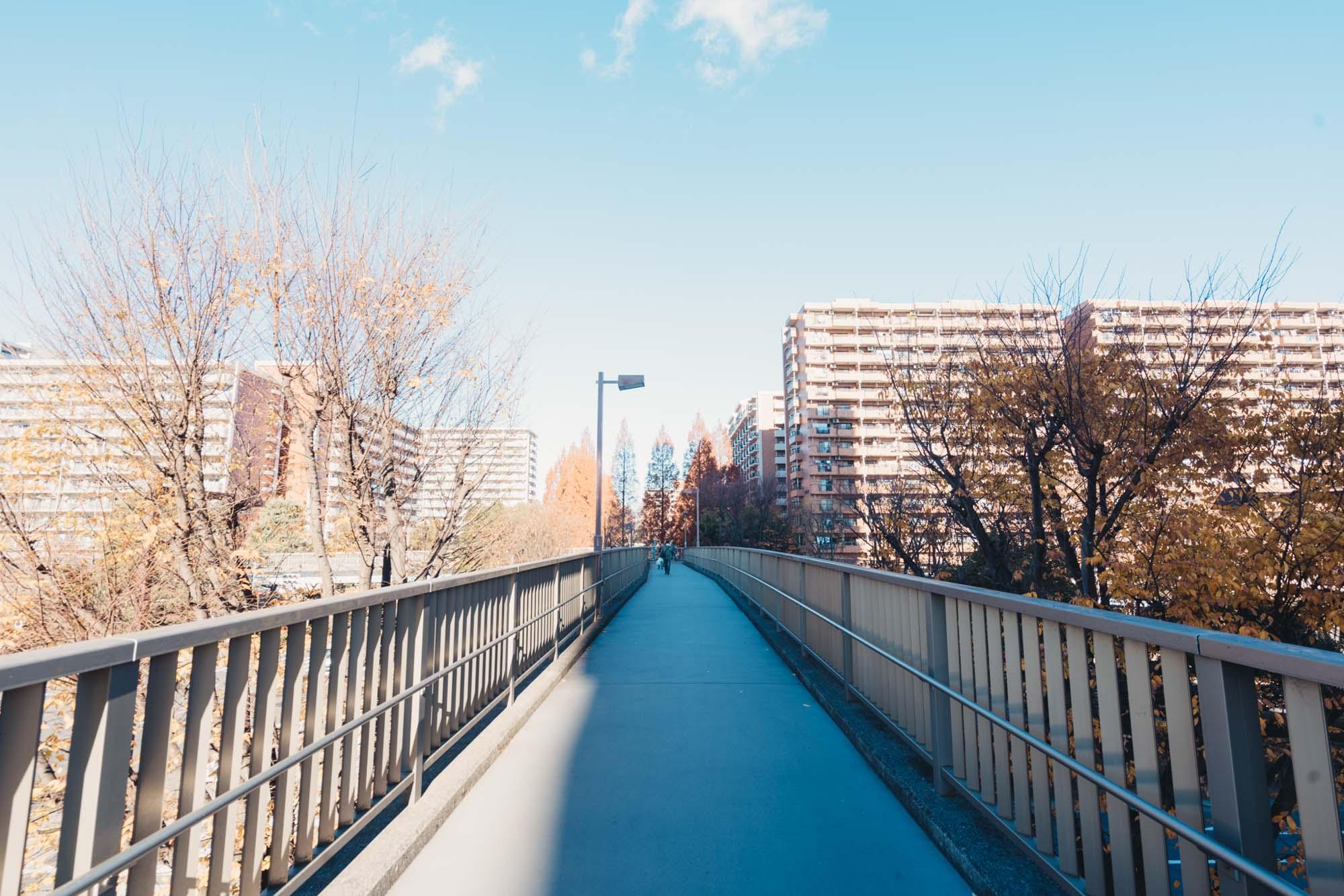 大江戸線の駅を中心に北と南に分かれ、大きな道路がありますが、車と人を分離したまちづくりが行われているので、安心して歩くことができます。駅のペデストリアンデッキから続く歩道橋を渡って、南側のエリアへ。