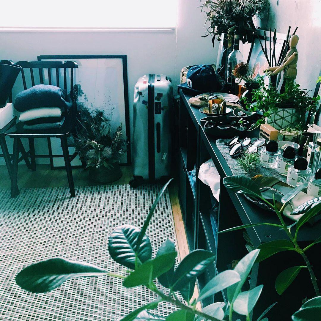 アクセサリーやサングラスなどは棚の上に見せて収納。植物などをうまく組み合わせていらっしゃるため、とても絵になります。