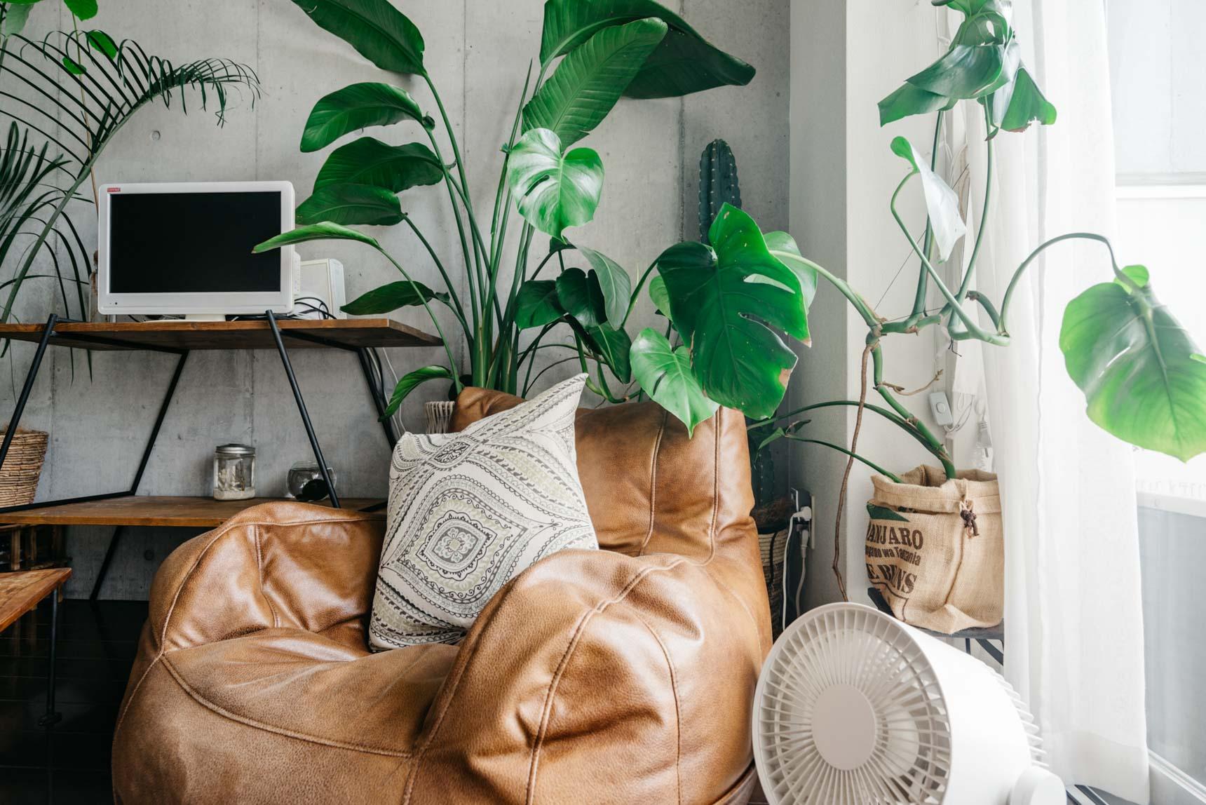 部屋にある大きな家具といえば、グリーンとテレビボード以外には、こちらのクッションソファぐらい。ひとりでも動かせる大きさのもので、テレビを見るとき、読書をするときなどベストポジションに移動して使います。