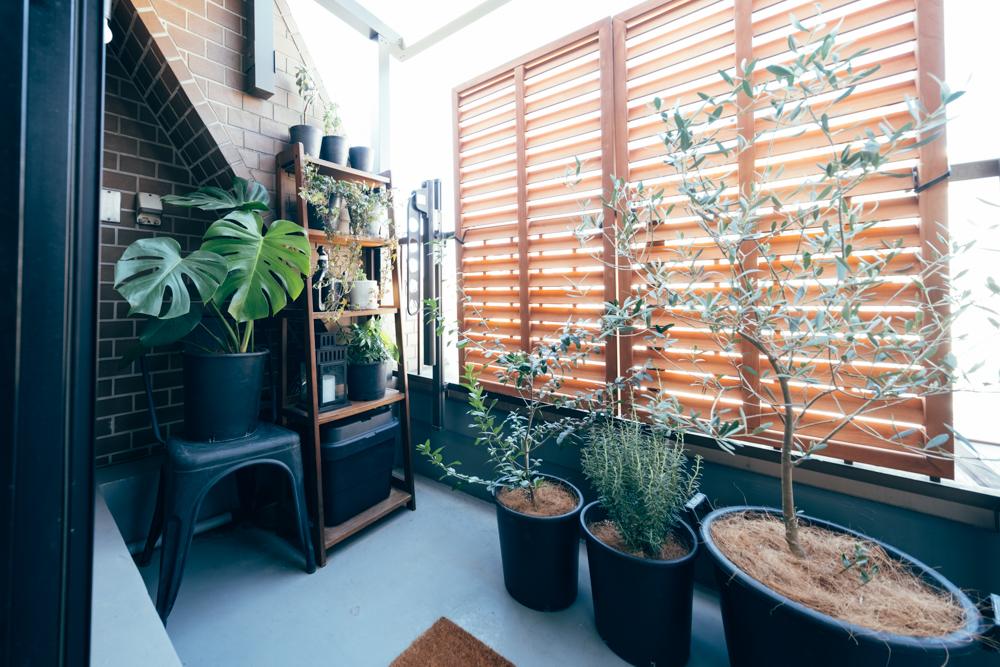 植物はこれに留まらず、まだまだ増やして行きたいと話されるように、ベランダスペースにも、たくさん育てられていました。 「ベランダにはもう少し高さのあるグリーンも増やして、将来的にはテーブルとチェアを置くことで、木漏れ日を眺めながらコーヒータイムを楽しめたら良いなと考えています。」