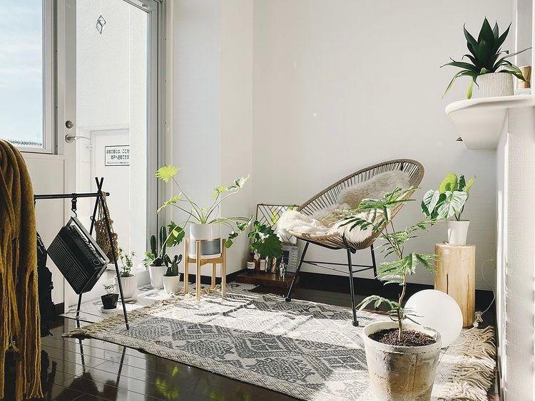 天井が高く、景色も良いことから、メインのお部屋のテーマは「アウトドアっぽく」。アウトドアチェアや、グリーンをたくさん置いて、お部屋の中に「外」の雰囲気を作られています。