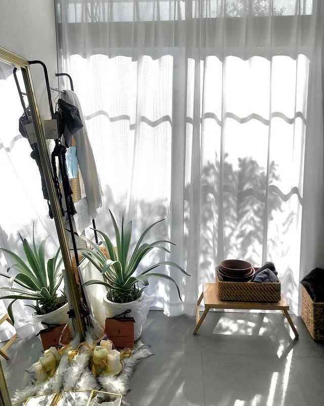 たしかに、コンクリにはグリーンやウッドの異素材の組み合わせがよく似合います。かっこいい雰囲気がありながら、ぐっと温かみも感じられるお部屋に。