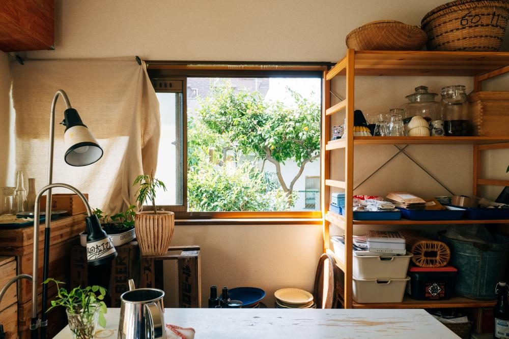 「家の窓から見える景色として、小さな窓からは春の時期に梅や椿、柑橘類も実っている景色を見ることができます。」