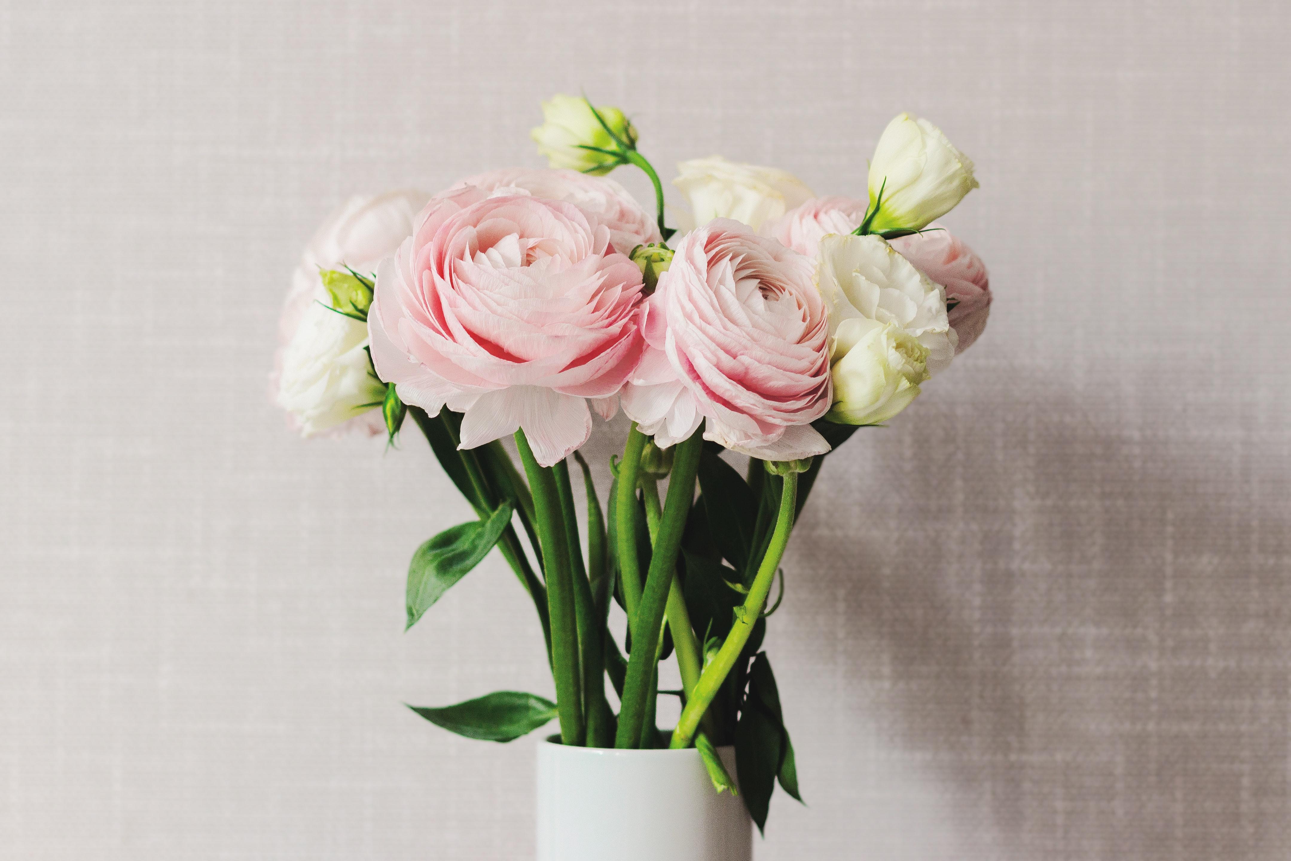 在宅ワークが多くっているいま、ホッと一息つきたいときに、お花の力を頼ってみてはいかがでしょう。ラナンキュラスは明るい色のものが多数あり、ワークデスクの隅に置いておけばきっと元気をもらえるはず。