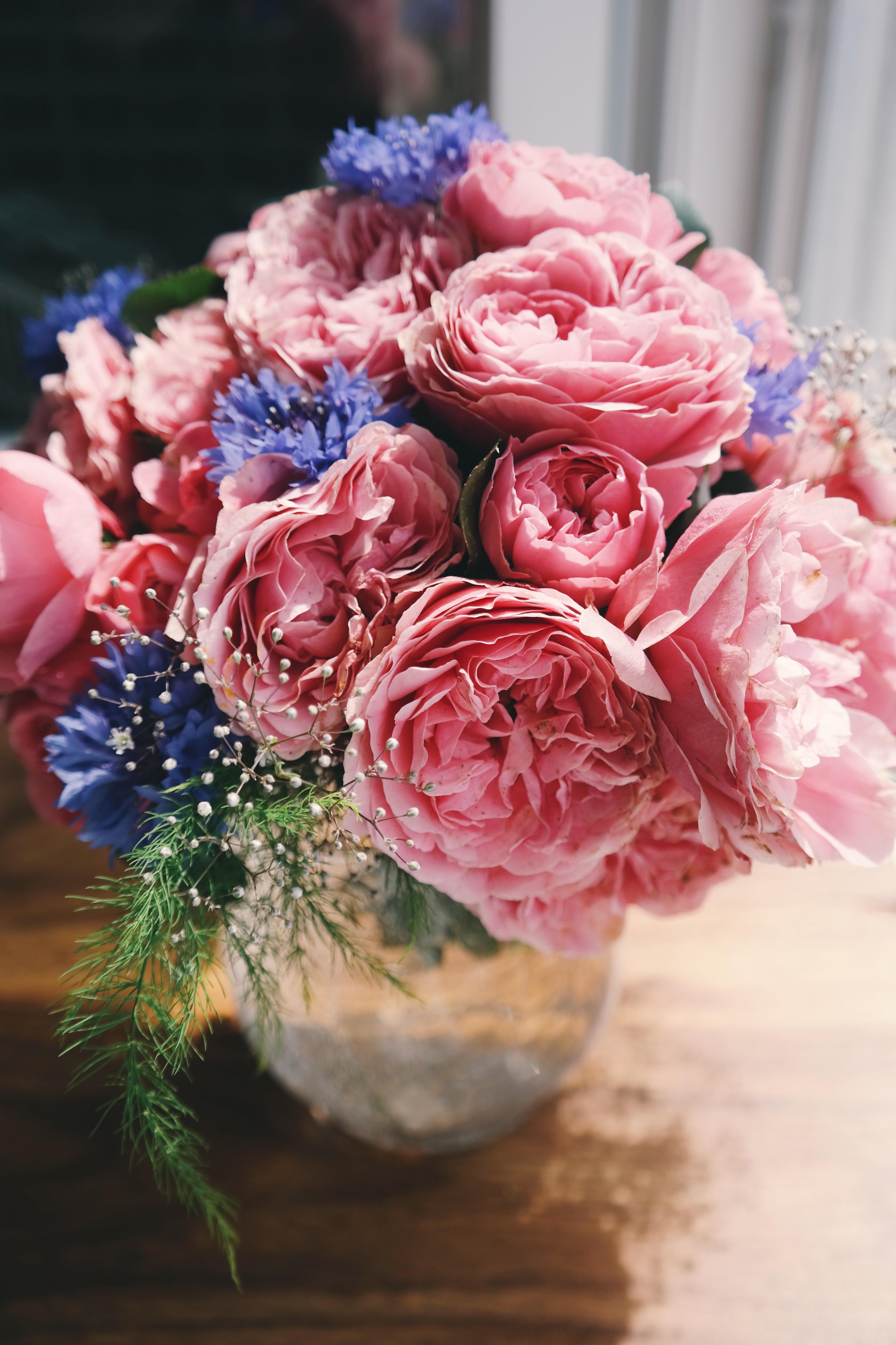 開花期は5~6月と短い間です。そのため花屋さんで国産のシャクヤクは、この期間のみの取り扱いのところがほとんど。