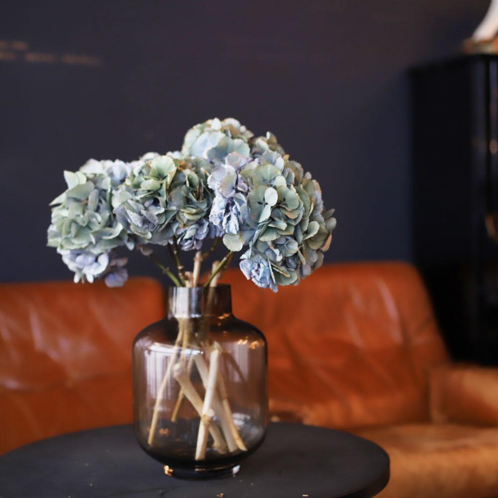 初夏に人気のお花のアジサイ。実は花言葉のひとつに「家族団欒」があるのはご存知でしたか。