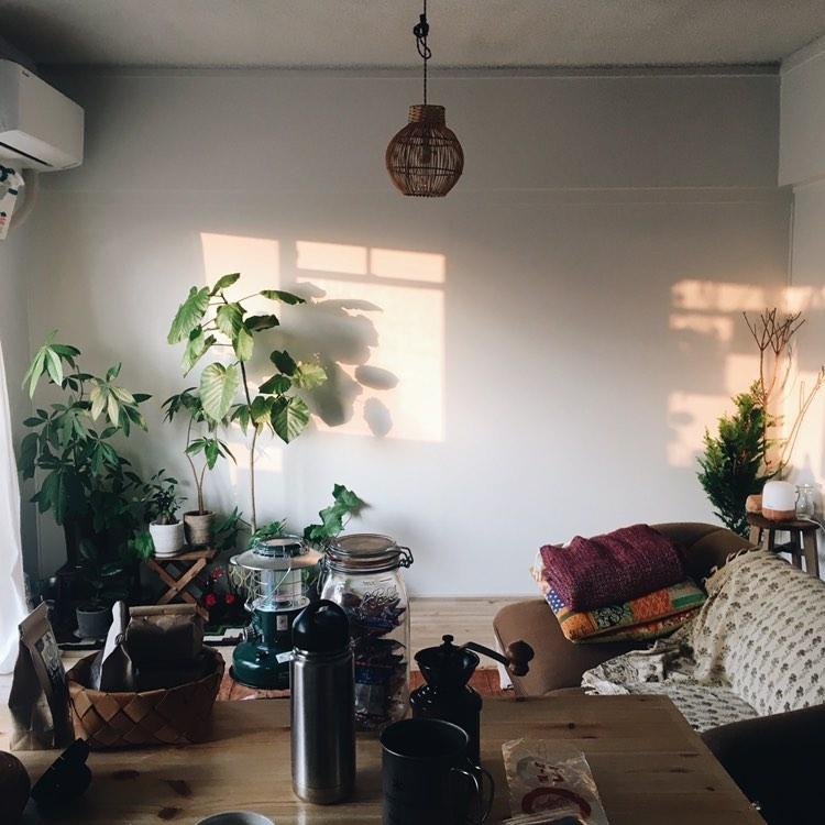 キッチンのお隣は、ソファやグリーンを置いたリラックススペース。
