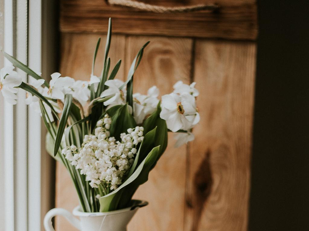 初心者にも育てやすい、比較的長持ちしやすいお花と合わせてまとめてみました。(参考記事:そろそろ知っておきたい、お花の上手な「生け方」。基本の飾り方とポイントって?)