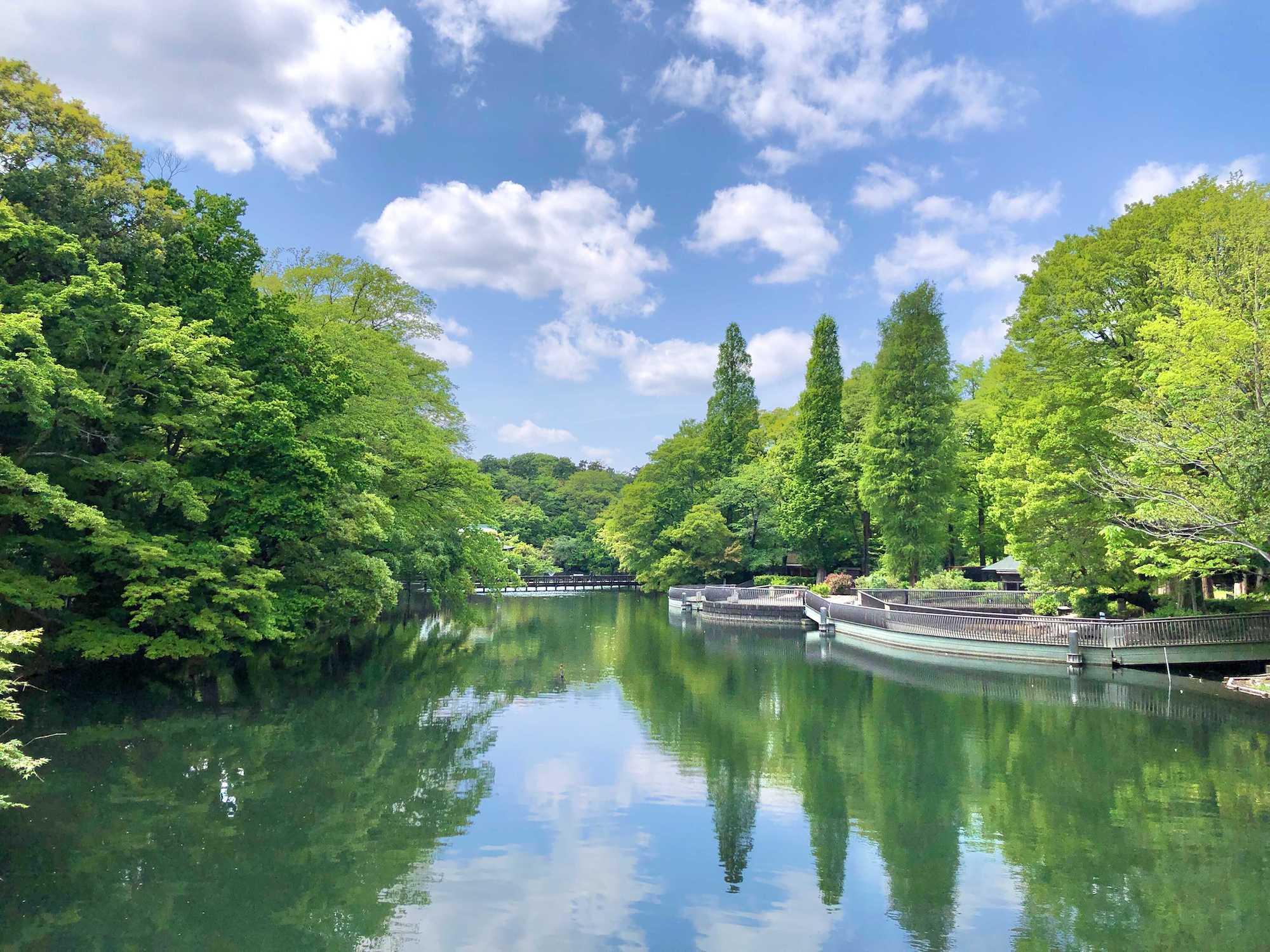休日には自然の中でのんびりと。東京都内・自然豊かな公園近くのお部屋まとめ