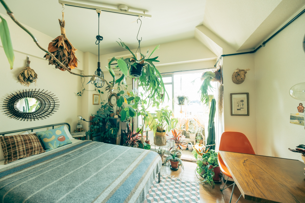住まいの中で最も植物が多いと話されるのがベッドルーム。 「植物に囲まれて眠りにつき、そして朝起きた時の気分は最高ですね。ちなみにベッドの上は、植物の絶好のディスプレイポイントになっています。」 「今はビカクシダをハンギングしてます。歩く上でも邪魔にならないですし、お部屋のジャングル感が一気に上がるんでおすすめです。」