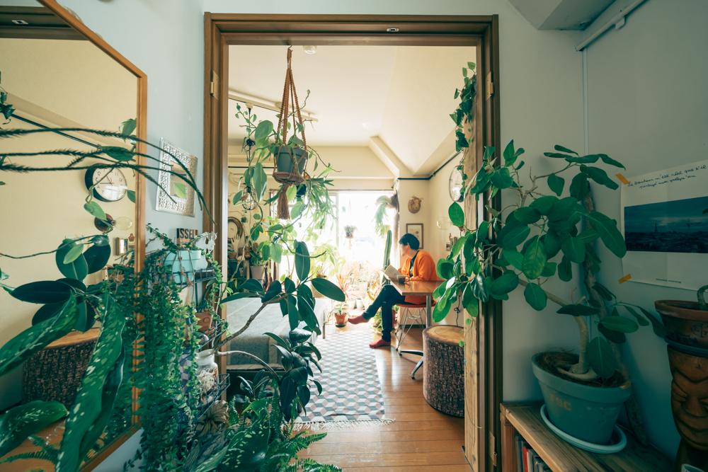 「開口部を設け、その周りを植物で飾ると、奥行きが出てより植物囲まれた住空間を作ることができます。この部屋で言うとリビングと寝室の間の仕切りを植物で飾ることでリビングからも寝室からもジャングルのような緑に囲まれた景色を作り上げています。」