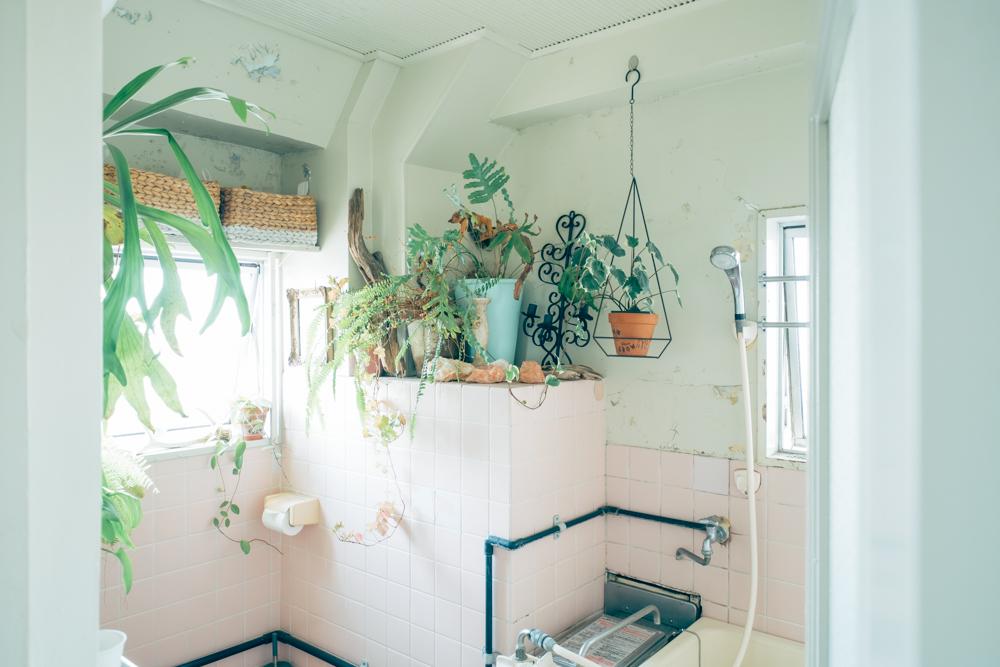 住まいの唯一のマイナスポイントだったと話すバランス釜の浴室スペースにも、植物を置くことで空間として、居心地の良い空間に。