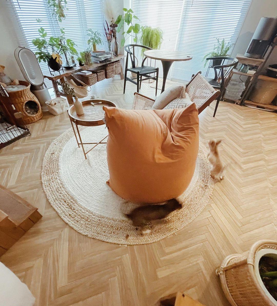 海外インテリア風のヘリンボーン柄の床は、自分でクッションフロアを敷いたもの。ワンちゃんにとっても歩きやすい素材です。