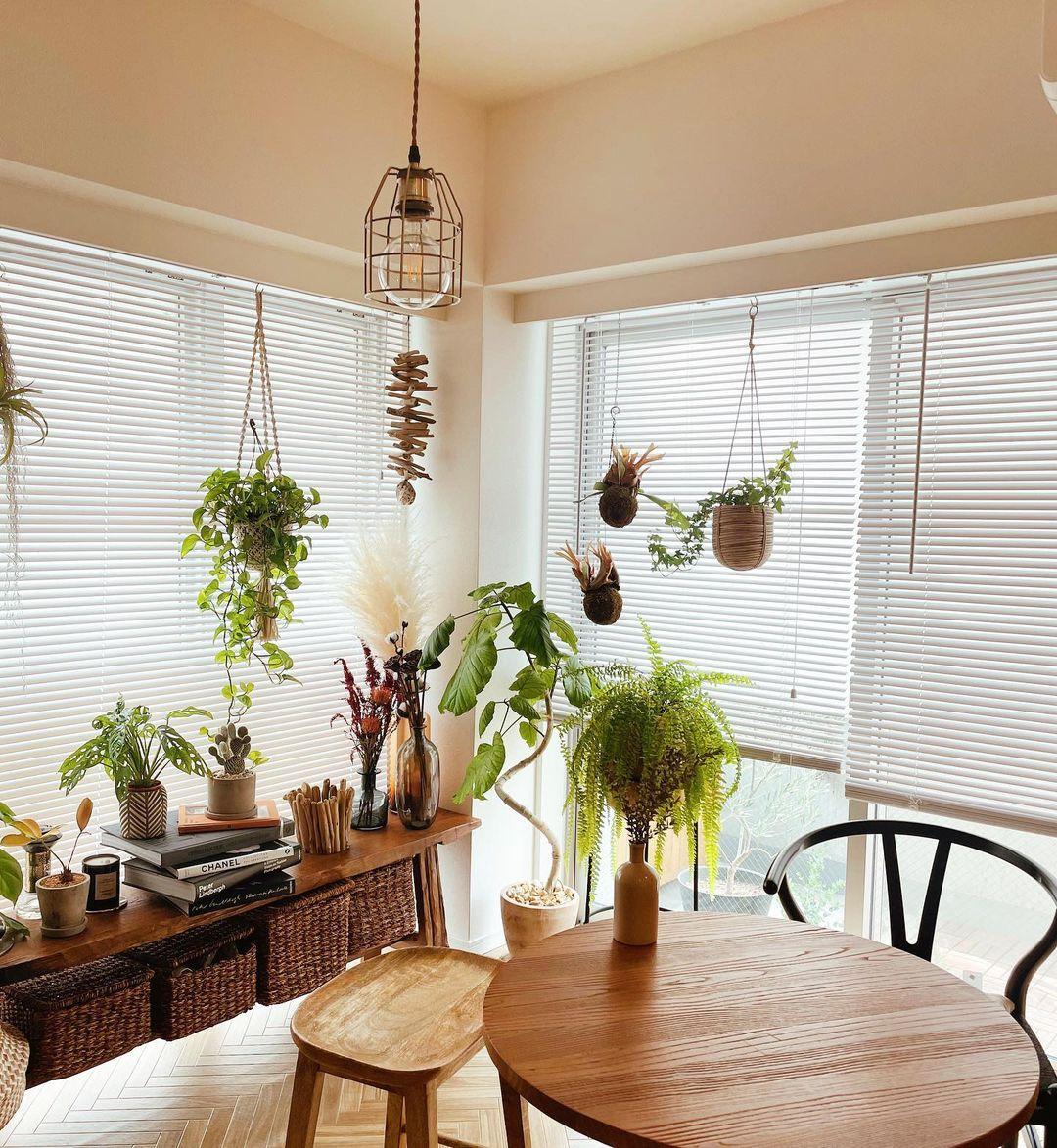 窓が2方向にあって明るいお部屋。植物もたくさん飾られていて、お部屋に入ったときまず目がいく、印象的な空間に。