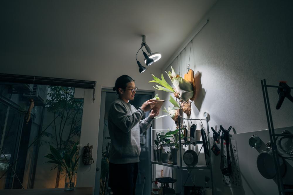 こちらの空間は、植物を育て、写真に収めるために照明にもこだわりがありました。 「前はIKEAの植物用照明を使っていたのですが、色ムラがあって写真が撮りづらかったんです。アマテラスLEDライト(10W)に変えて自然光に近い色温度でインテリア照明としても違和感がなく、植物がよく育ちますね。室内植物育成の頼もしいアイテムです。」
