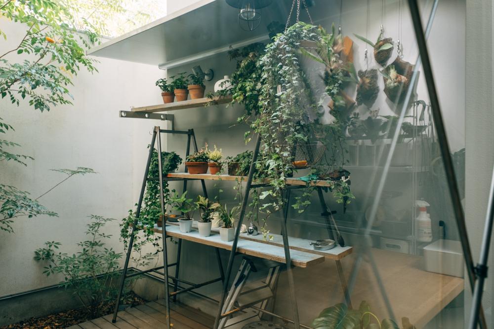 決め手となった中庭は、最近になって力を入れられているというスペース。たくさんの植物が並べられていました。 「植物は前の住まいではほとんど無くて、この中庭がきっかけで最近になって購入したものばかりです。」