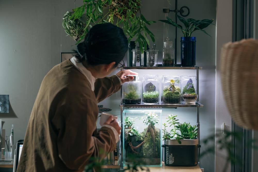 「デスク周りでは緩く研究室のような雰囲気にしたくて、テラリウムで楽しんでいます。こうしたディスプレイを作るのも好きで、植物を原形に近い状態で楽しめるのも気に入っています。」