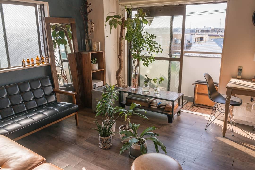 お部屋に3年暮らす中で、植物はどんどん増えていっているそう。