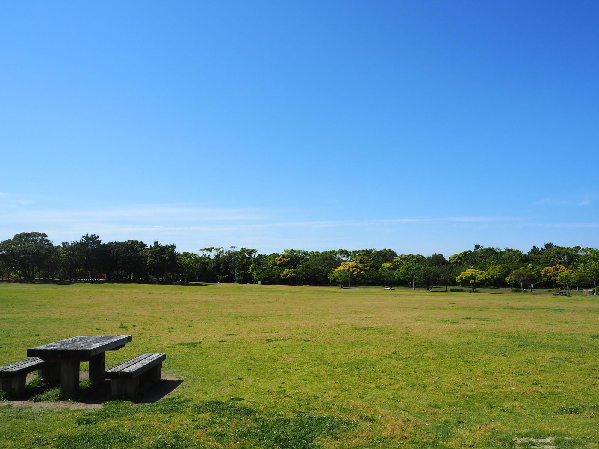 「今津運動公園」では、芝生広場で青空を見ながらのんびり。