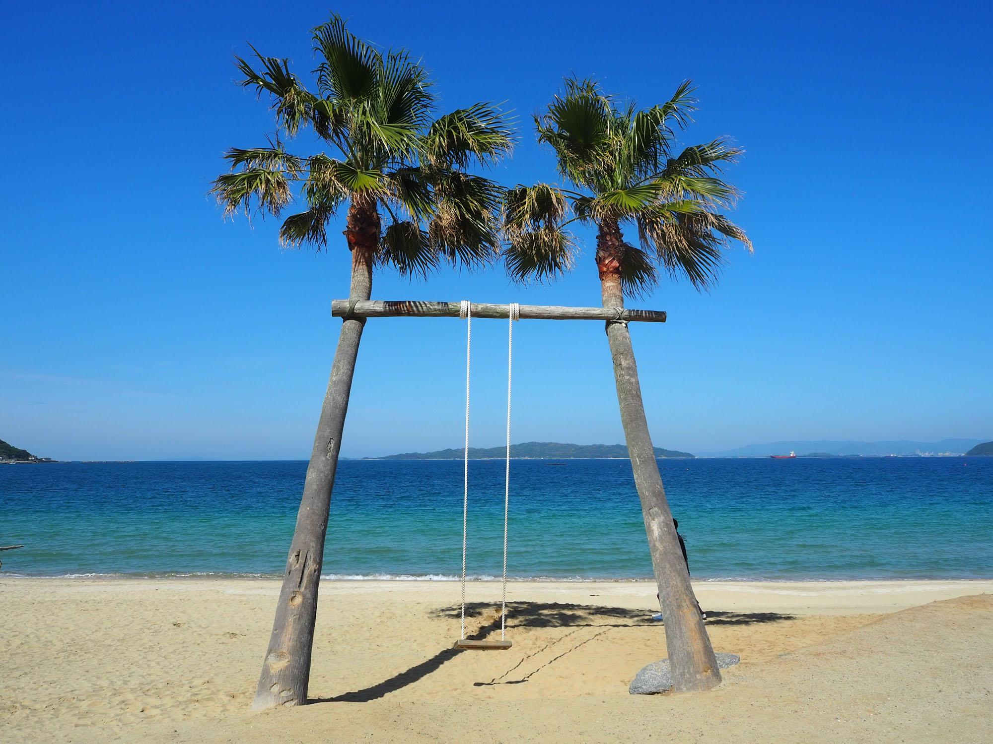 唐泊エリアで、楽しそうな声につられて海岸に行ってみると、ヤシの木ブランコを発見しました。海に向かって漕ぎだすと海を飛んでいるような爽快感。ここは「活魚茶屋 ざうお本店」さんの敷地内にあります。