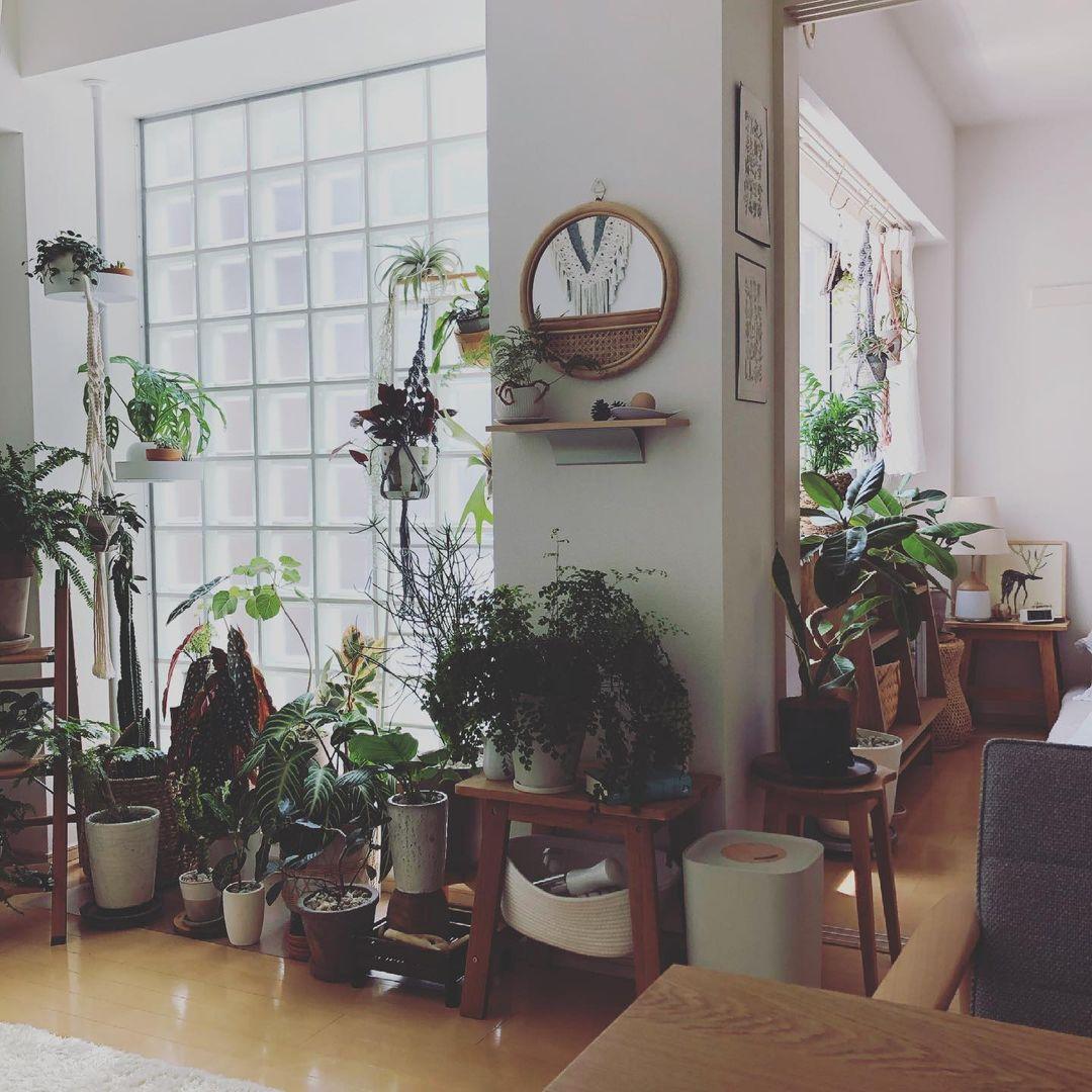 Nahoさんのお気に入りの場所は、こちらに置かれているグリニッチのカフェテーブルと、カリモクのチェア。仕事も食事も全てこの場所が中心に。確かに、座っていると、お部屋の植物が全て目に入って、とても落ち着きそうな空間です。