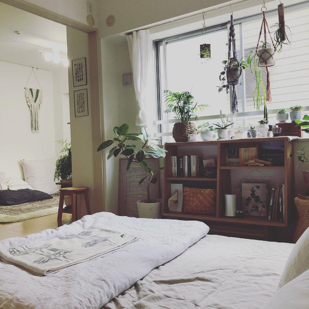 こちらは、リビングのお隣にあるNahoさんの自室。こちらにもたくさんの植物が並びます。