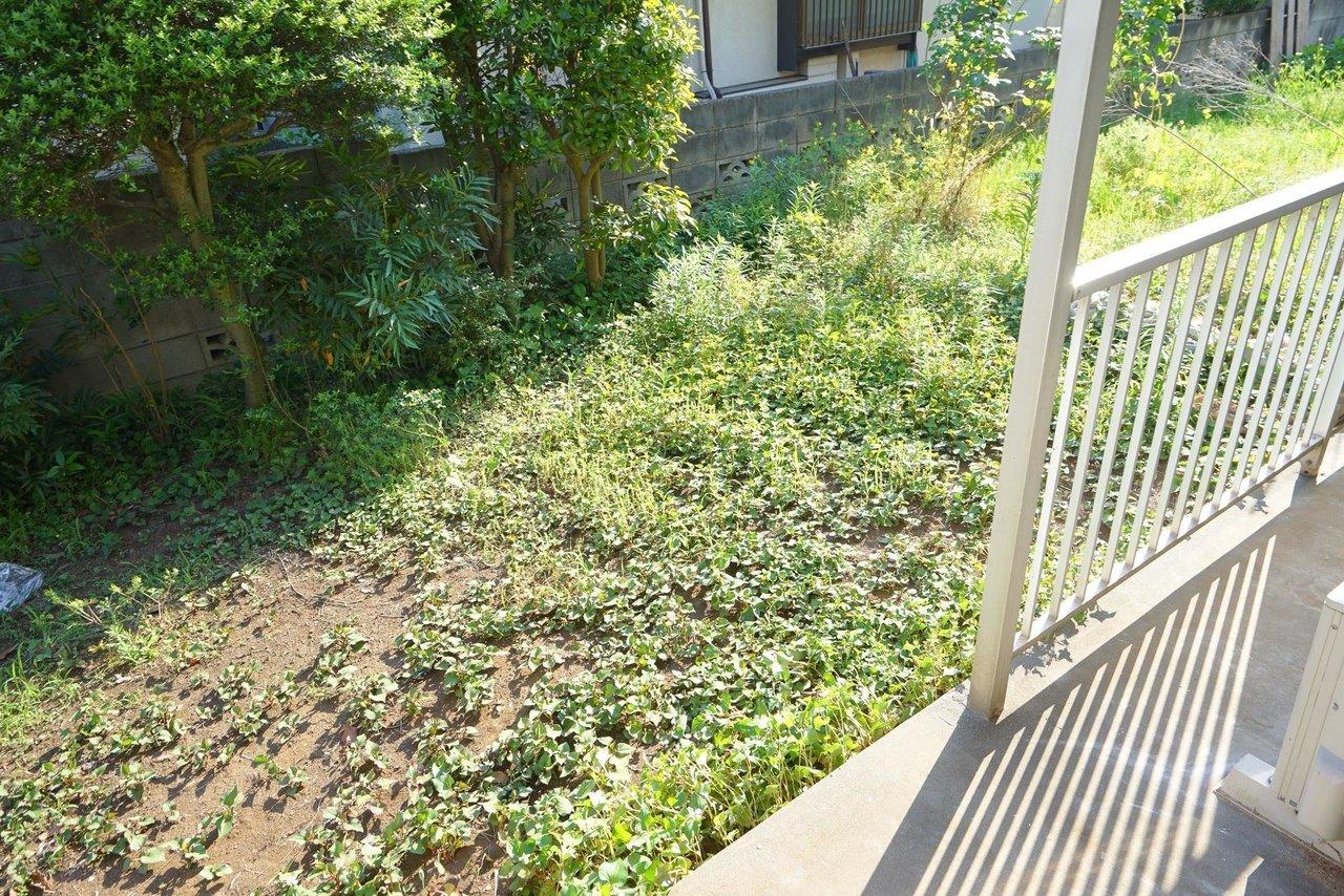 窓の外にはお庭があり、家庭菜園も楽しめるんです。たまには2人で縁側に座って野菜やお花を眺めるのも楽しそう。
