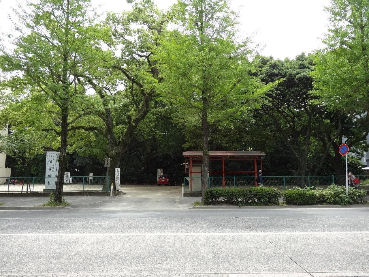 こちらが住吉神社。緑にパワーをもらえそうです。