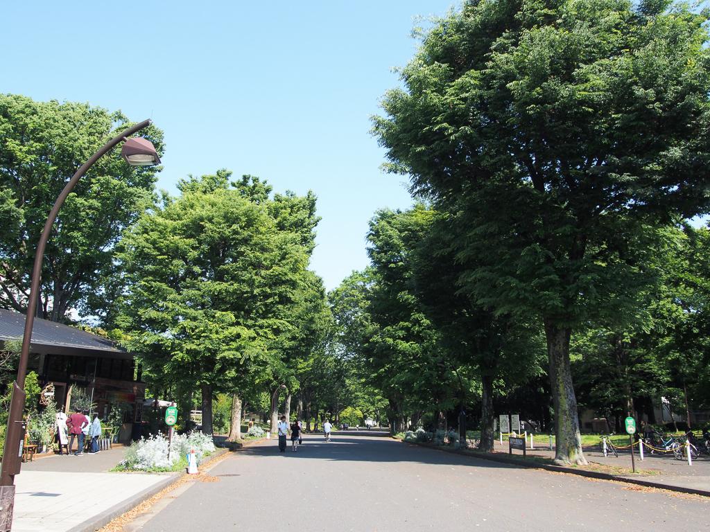 平日も休日も、しっかり楽しみたい。駒沢大学駅は、街をアクティブに楽しみたい方におすすめの街です。