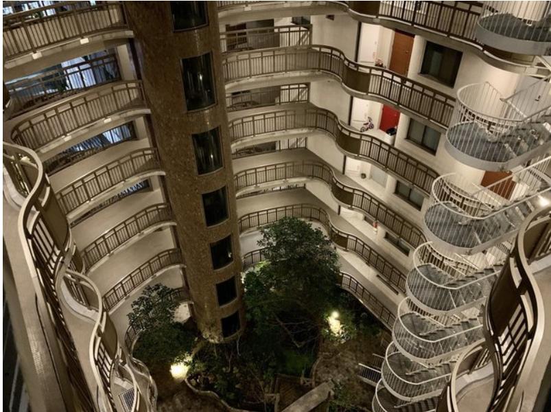 建物の内側のパティオを囲む回廊。曲線のデザインが美しく外国に来たような気持ちに。