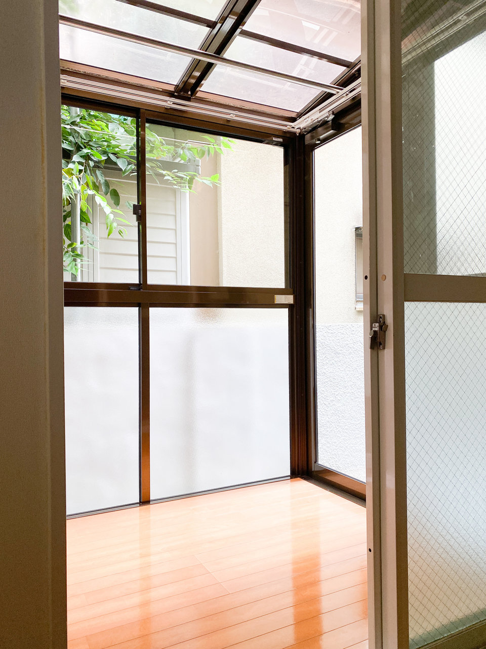 天井もガラスのサンルームです。雨の日はもちろん、花粉シーズンにも重宝しますね。