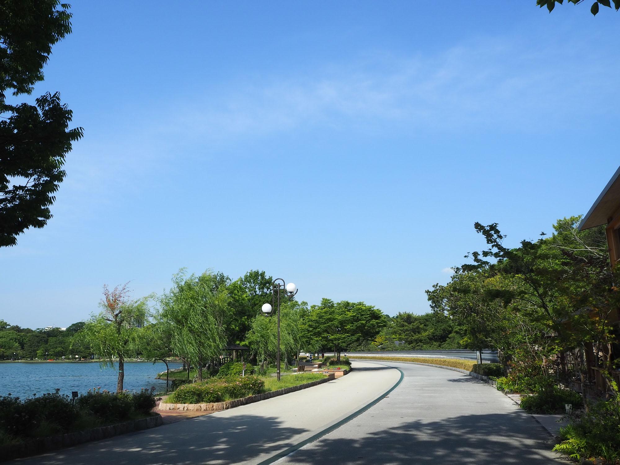 &LOCALS大濠公園をあとにして、大濠公園内の自転車用園路(写真右側)を進みます。