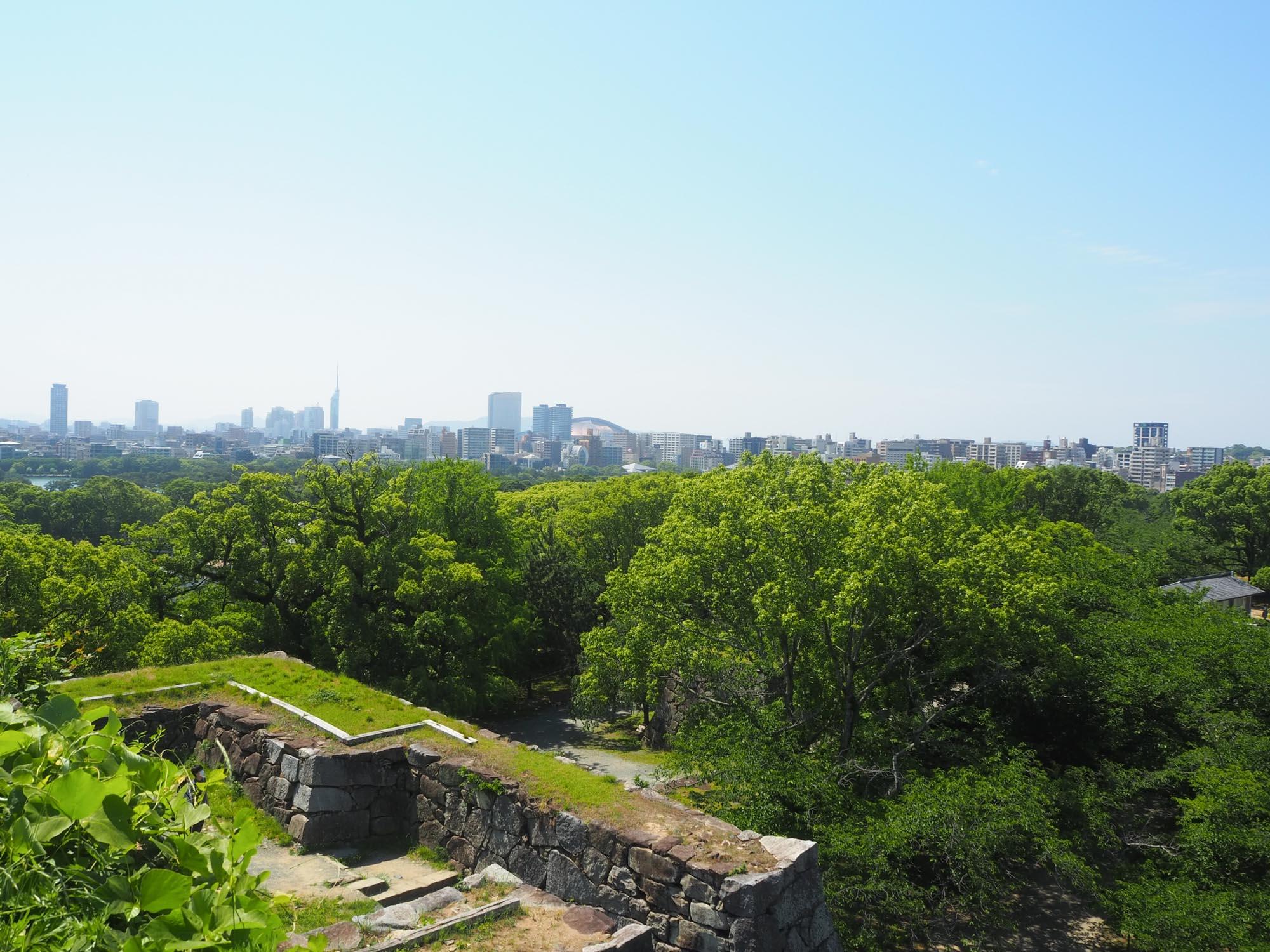 天守台跡からの景色。正面に福岡PayPayドームと福岡タワーが見えます。 緑に囲まれて、ほっと一息。