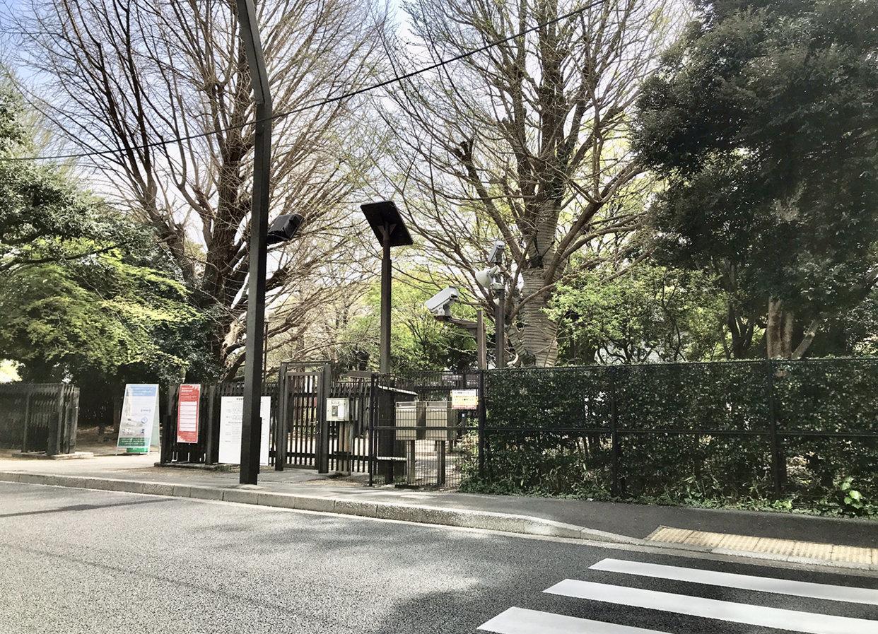 その名の通り新宿御苑の最寄り駅でもあり、都心でありながら四季折々の自然を楽しむことができます。勉強の合間に、休日に、リフレッシュを気軽にできるのは嬉しいですね。