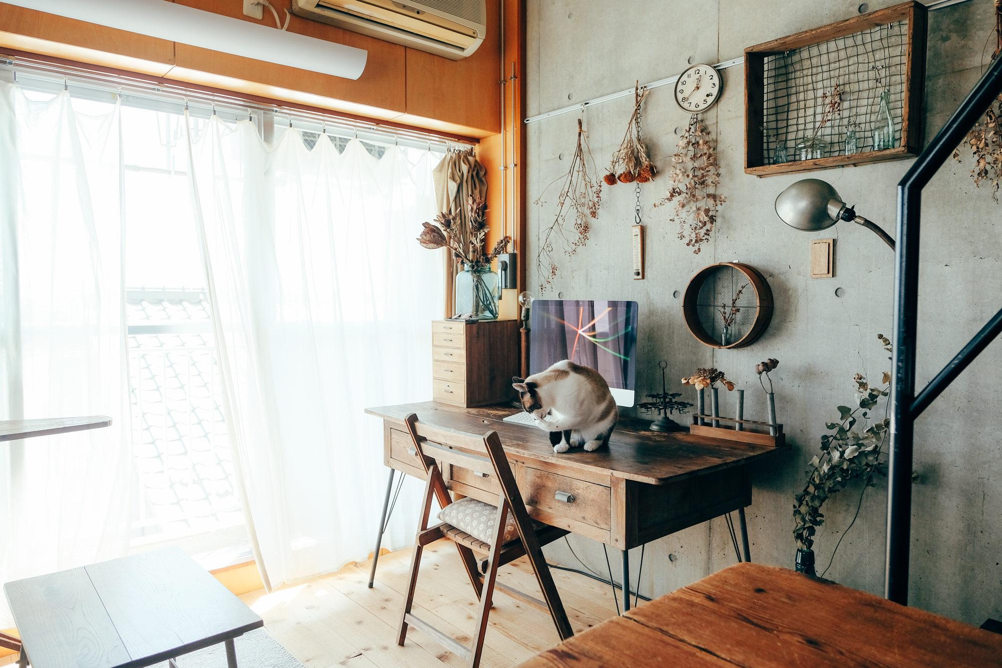 かわいい猫ちゃんとデザイナーズマンションに暮らす、二人暮らしの方のお部屋。古道具が大好きで、たくさん集めていらっしゃるのだそう。ヴィンテージの雰囲気に合うよう、床も貼りなおしたほどのこだわりぶりです。