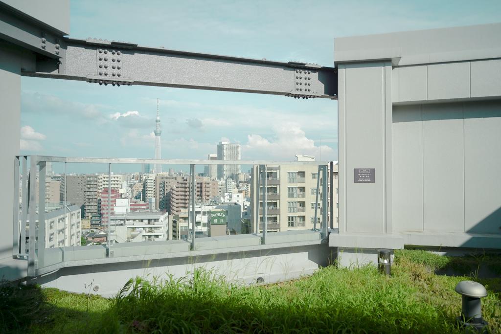 15階には芝生が敷かれたテラススペースもありました。遠くにはスカイツリーを眺めることもできます。