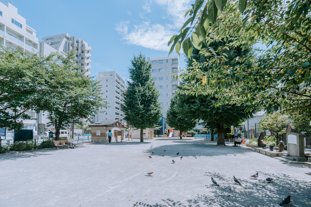 マンションの目の前には、住民の憩いの場所となっている杉山公園があります。