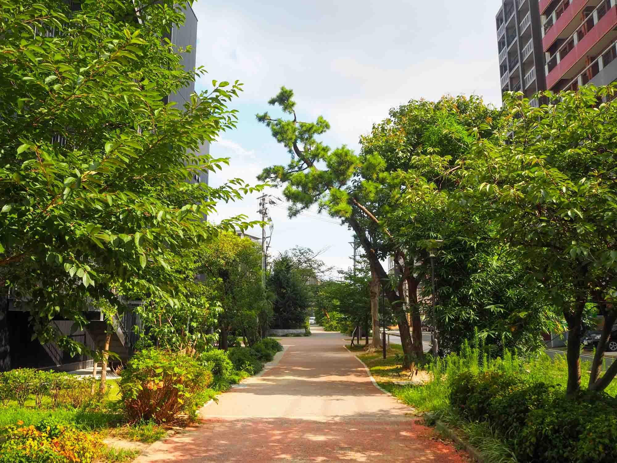 高層マンションの建ち並ぶ街の裏側には、こんなふうに穏やかな緑道も残る六本松。自転車でのお散歩が楽しいですよ。