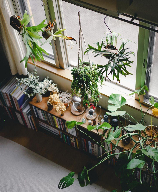 「一番、ぼーっとできるスペースを二人で作ろう」と、インテリアや植物、本を自由に配置したリビングスペースは、お二人のお気に入りの場所です。